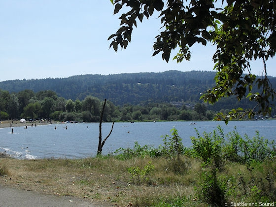 Lake sammamish seattle and sound for Lake sammamish fishing