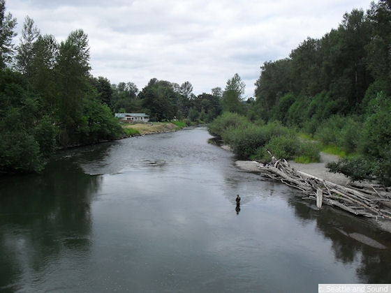 Nisqually River Seattle And Sound