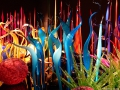 With the Mille Fiori – Italian for 'a thousand flowers' – Chihuly assembles gardens of glass that include many of his series of works.