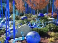 A rich backdrop for the art, the Chihuly Garden features paths lined with trees, plants and flowers.