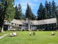 Lake Quinault Lodge's back lawn