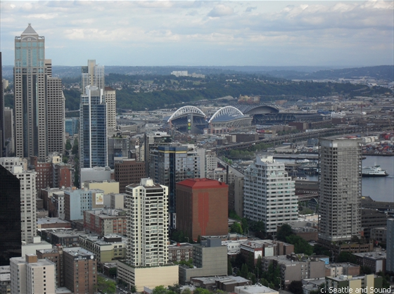 Downtown Seattle from Space Needle