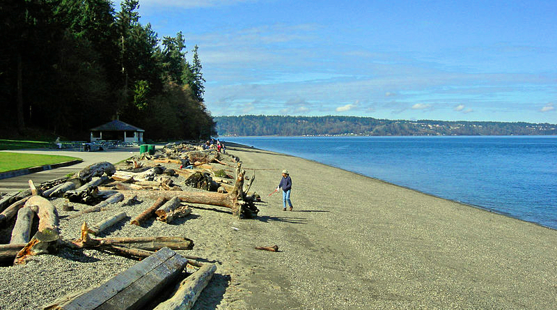 Owen Beach at Point Defiance Park